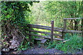 ST2097 : Stile near Blaen Cwmdows by M J Roscoe
