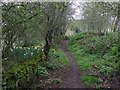 SJ4768 : Permitted path to Great Barrow by Dave Dunford