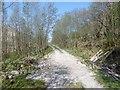 NN1236 : A new Glen Kinglass road by Richard Webb
