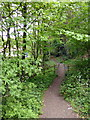 TM0023 : Entrance to Bourne Valley Nature reserve by PAUL FARMER