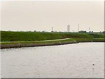 SJ4978 : Manchester Ship Canal, Frodsham Marsh by David Dixon