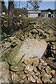 NJ6003 : Balnacraig Recumbent Stone Circle (3) by Anne Burgess