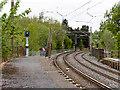 SD7807 : Metrolink over Spring Lane by David Dixon