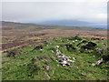 NG2560 : One of many ruins by Richard Dorrell