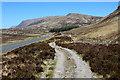 NN2255 : West Highland Way beside the A82 by Chris Heaton