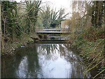 TQ0493 : River Colne backwater at Drayton Ford by Robin Webster