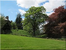 NY6820 : Appleby Castle: outer ditch, looking west by Stephen Craven