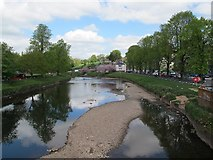 NY6820 : River Eden looking north from Appleby bridge by Stephen Craven