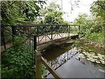 TQ1469 : Bushy Park - Footbridge over Longford River by James Emmans