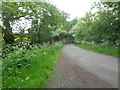 SO9558 : Stoney Lane towards Himbledon by Jeff Gogarty