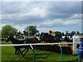 TF9228 : A hurdle race at Fakenham racecourse on Ladies Day 2016 by Richard Humphrey