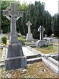 J3630 : Celtic crosses in St Colman's CoI graveyard by Eric Jones