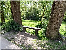 SJ9398 : Harry's bench by Gerald England