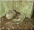 TF9037 : WW2 Ammunition lock-up (interior) by Evelyn Simak