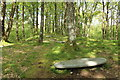 NX3978 : Sculptures, Glen Trool by Billy McCrorie