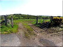 H5575 : An open field, Streefe Glebe by Kenneth  Allen
