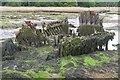 SU4807 : Old remains of a boat, Bunny Meadows by Jim Barton