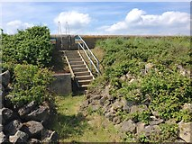 TQ7178 : Steps leading up the Sea Wall, near Lower Hope Point by Chris Whippet