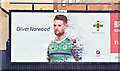 J3373 : Northern Ireland - Euro 2016 poster (Oliver Norwood), Belfast (May 2016) by Albert Bridge