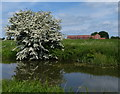 SK7287 : The Grange viewed from the Chesterfield Canal by Mat Fascione
