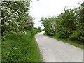 TQ8167 : The Saxon Shore Way near Riverside country Park by Marathon