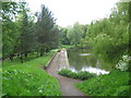 SP0394 : Tween lakes again-Red House Park, Great Barr, Sandwell by Martin Richard Phelan