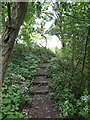 SJ8154 : Merelake Way: steps up to golf course by Jonathan Hutchins