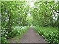 SJ8154 : Merelake Way by Jonathan Hutchins