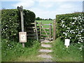 NY3359 : Footpath, Burgh by Sands by JThomas