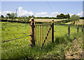 J3663 : BWC gate near Carryduff by Rossographer