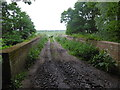 TQ7675 : Bridge over the Hundred of Hoo Railway south of Cooling by Marathon