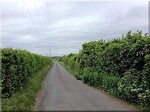 TQ8068 : Grange Road, Grange by Chris Whippet