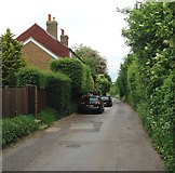 TQ8068 : Lower Twydall Lane, Lower Twydall by Chris Whippet