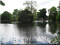 SP0394 : South lake-Red House Park, Great Barr, Sandwell by Martin Richard Phelan