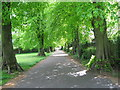 SP0494 : Return to Newton Road-Red House Park, Great Barr, Sandwell by Martin Richard Phelan