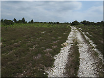 SU2609 : Track on Acres Down by Hugh Venables