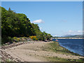 NN0974 : Shore line of Loch Linnhe south of Camusnagaul by Trevor Littlewood