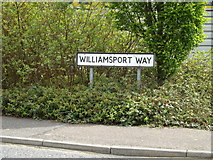 TM0954 : Williamsport Way sign by Adrian Cable