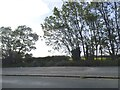 SU5595 : Layby on Abingdon Road, Clifton Hampden by David Howard