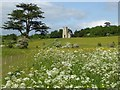 SO8844 : Cow parsley and Croome D'Abitot church by Philip Halling