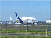 SJ3464 : Ready for take off - Airbus Beluga #2 at Hawarden Airport by John S Turner