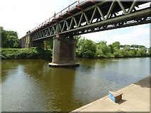 SO8455 : Railway Bridge over the River Severn by Philip Halling