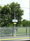 TM0954 : Station light & Needham Market sign by Adrian Cable