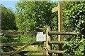 SS2908 : Path along Bude Aqueduct by Derek Harper