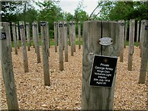 SK1814 : National Memorial Arboretum: Shot at Dawn (detail) by Stephen Craven