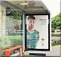 J4087 : Northern Ireland - Euro 2016 poster (Michael Smith), Carrickfergus (June 2016) by Albert Bridge