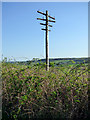 NS3371 : Old telegraph pole by Thomas Nugent