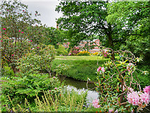 SJ8383 : Lower Gardens and River Bollin, Quarry Bank Mill by David Dixon