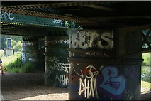 TQ3882 : View of the graffiti-covered abutments of the c2c/District and Hammersmith and City line bridge over the River Lea Navigation by Robert Lamb