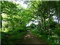 SD7213 : Shady footpath in Bromley Cross by Philip Platt